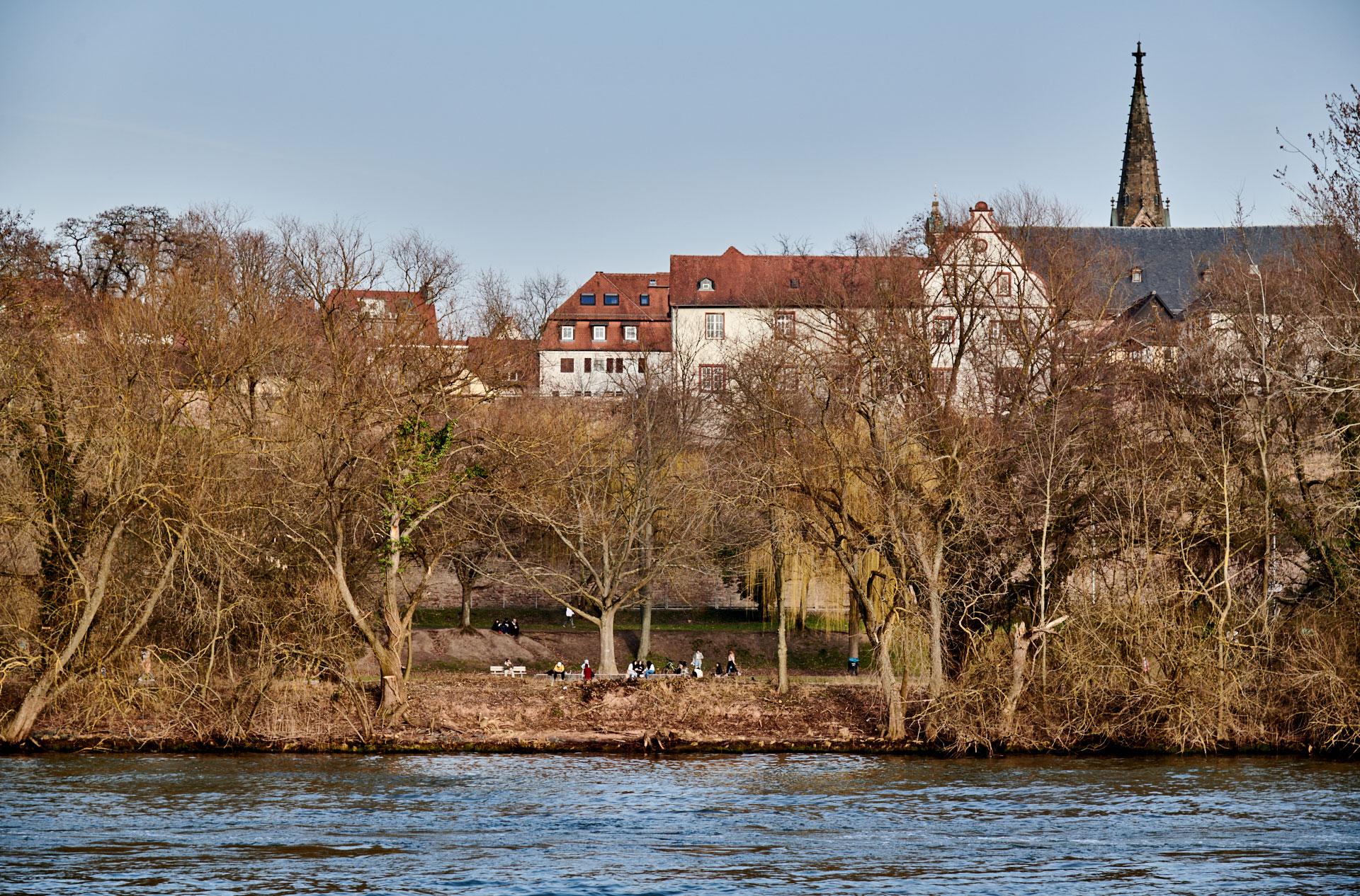 Blick vom Volksfestplatz Richtung Schlossufer (in Höhe altes Forstamt) über eine neue, kleinere Sichtschneise ©Thomas Göttemann